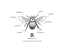 Scientific Bee